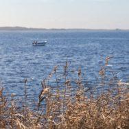 Boot auf Flussmündung