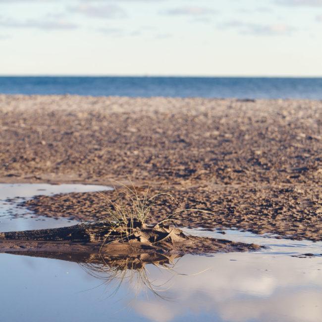 Meerwassereinschluss