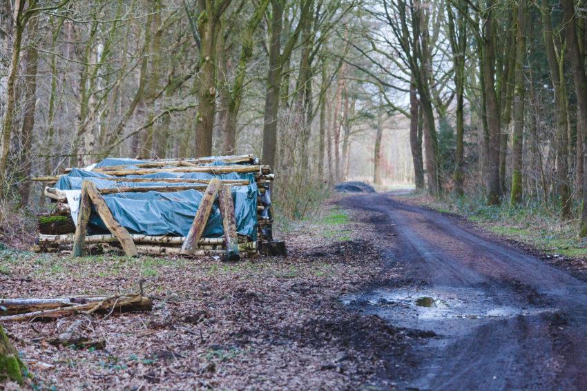 Holzhaufen am Feldweg