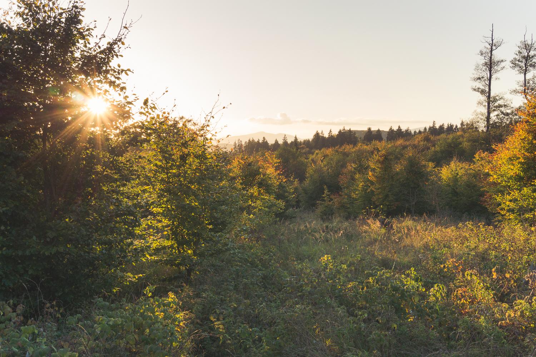 Im Herbst im Harz: Rübeland