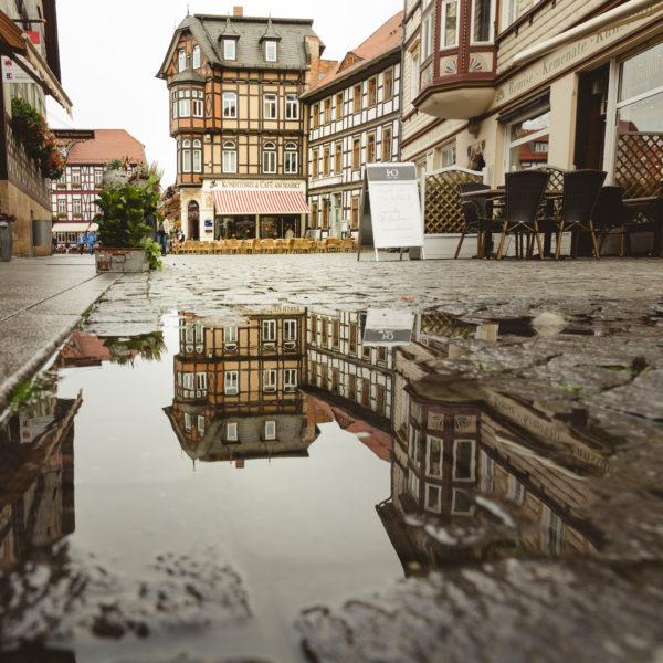 Spiegelung in Regenpfütze