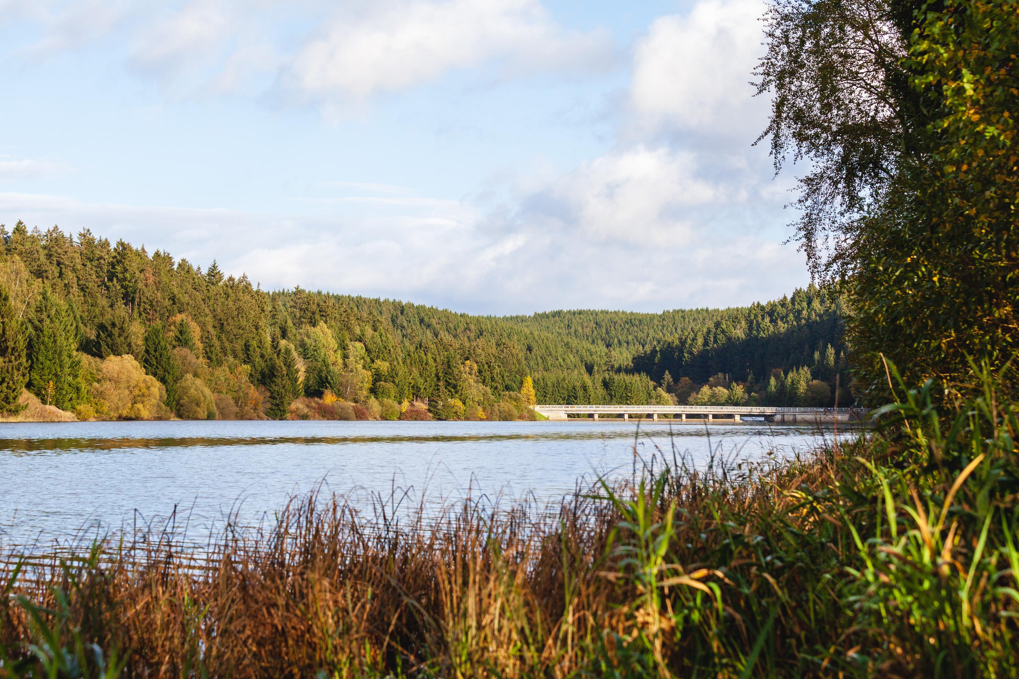 Im Herbst im Harz: Überleitungssperre Königshütte und Burgruine Königsburg