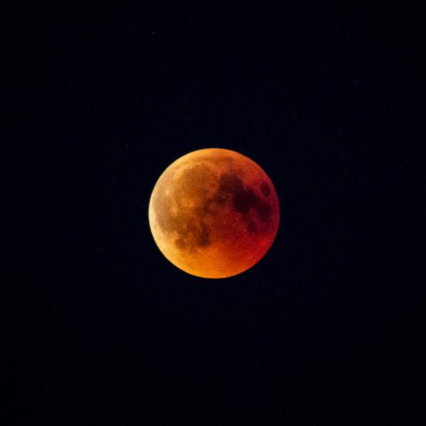 Das Bild zeigt den rot-orangen Mond während der Mondfinsternis am 27. Juli 2018.